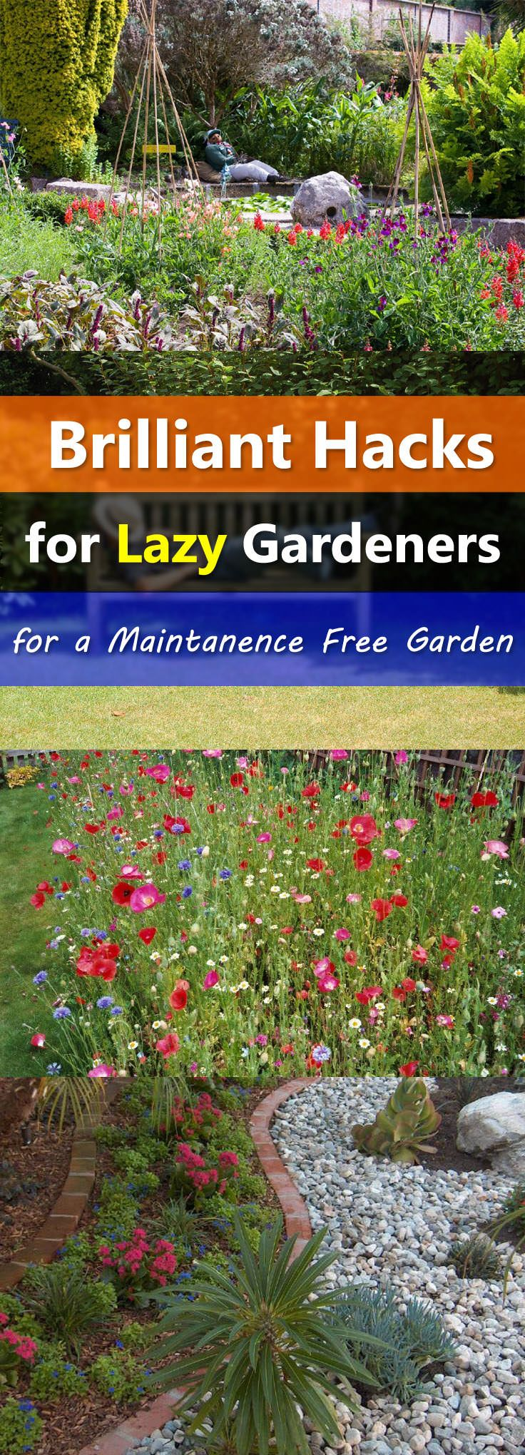 Maintenance Free Garden Ideas garden galleries Gardening Hacks For The Lazy Gardeners To Make A Low Maintenance Garden