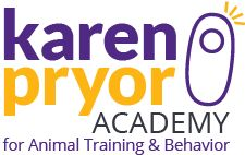 Dog Trainer Foundations (DTF) from the KPA.   Ideal for anyone who would like to build a solid foundation in positive reinforcement-based training.