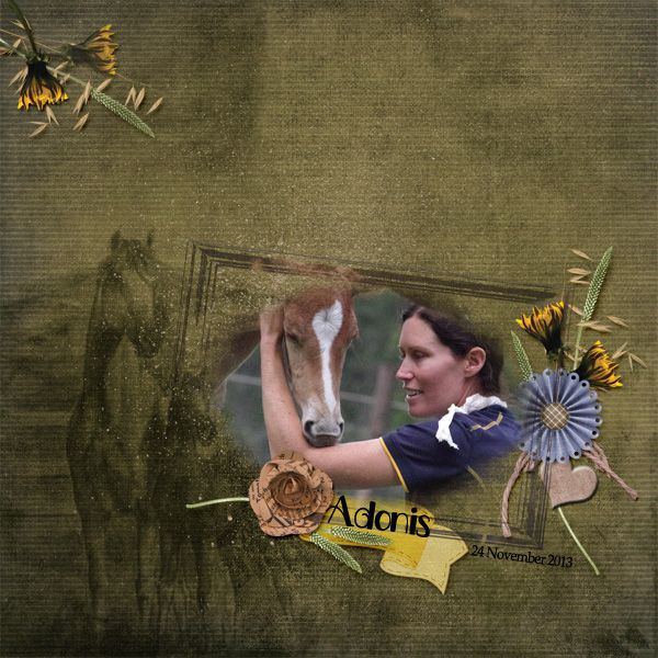 Rawhide Collection by Nutkin Tailz Designs & Wisteria Moments http://www.pixelsandartdesign.com/store/index.php?main_page=product_info&cPath=128_136&products_id=1280