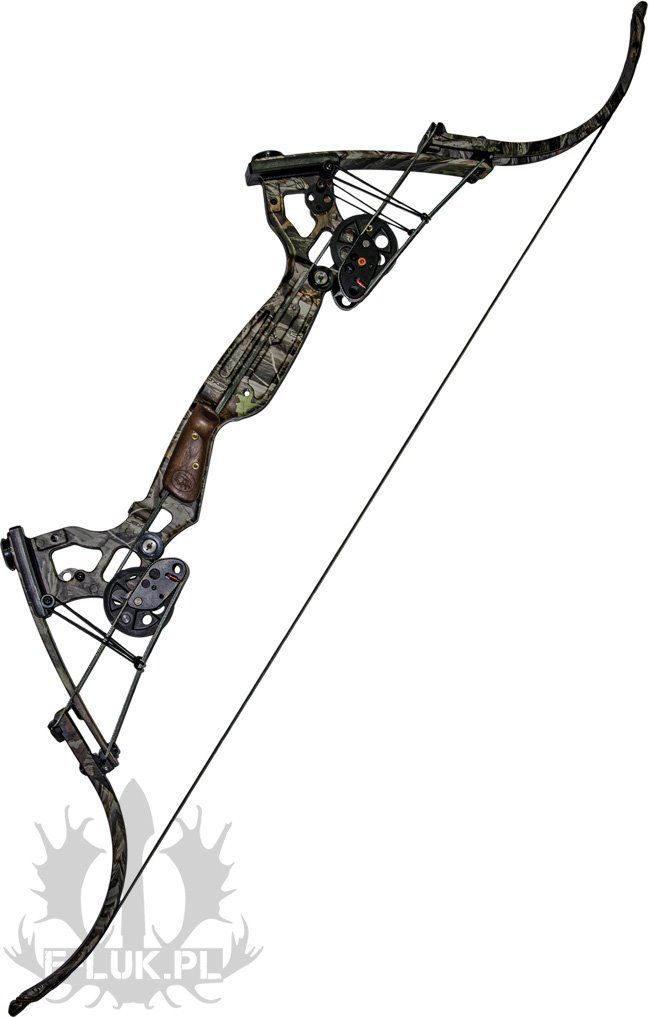 25 best ideas about compound bows on pinterest compound for Compound bow fishing
