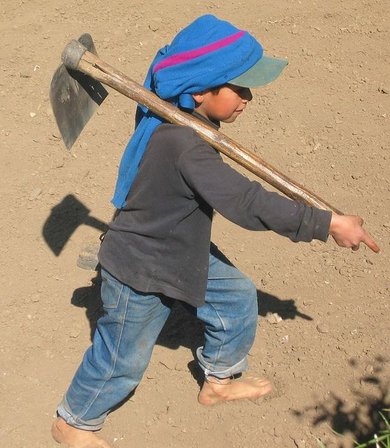 child labor guatemala essays Child labor in the philippines has been a problem since the early twentieth century however in 1946 the philippines claimed its independence from american rule and became a republic this allowed the philippines to make their own child labor laws.