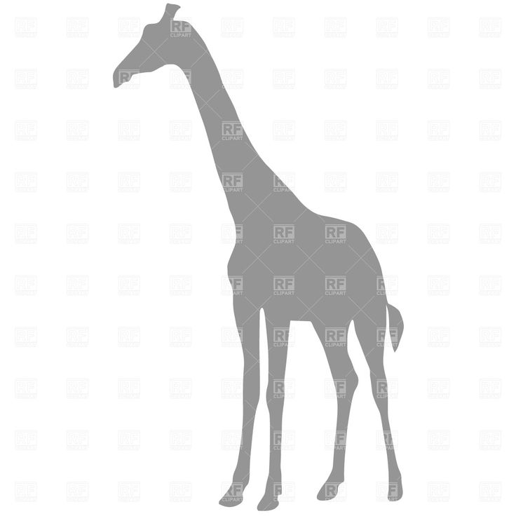 The 25+ best Giraffe silhouette ideas on Pinterest ...