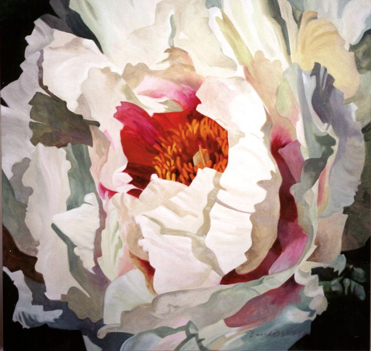 "Inge's Peony - oil on canvas 40x40"" nfs"