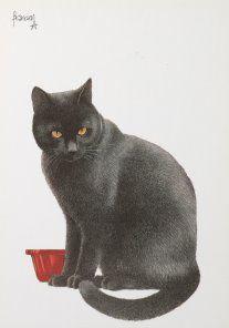 Postkaarten    Francienªs Katten    Francien Westering, van    C6104    Postkaarten, Tekeningen, Dieren, Katten,