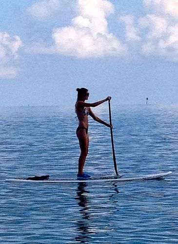 I'd love to take up paddle boarding