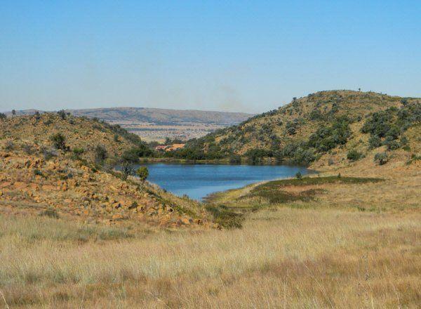 Suikerbosrand Nature Reserve (02.05.2014) - Sedaven Dam | MeyertonW