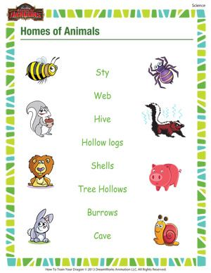 homes of animals printable 1st grade science worksheet grammer science worksheets 1st. Black Bedroom Furniture Sets. Home Design Ideas