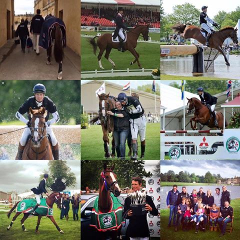 Two years ago today Chilli Morning and William Fox-Pitt Eventing were crowned Badminton champions 2015. What an amazing team #superstallion #badmintonchampions2015