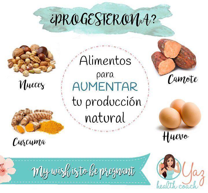 Te quieres embarazar y tienes bajos niveles de progesterona? Acá te pasó una lista de alimentos que nos ayudan a aumentar tu producción natural! La progesterona ayuda a la correcta maduración de los ovulos y también a que una vez que es fecundado pueda implantarse en el utero para que se desarrolle correctamente Los huevos contienen progesterona en grandes cantidades sobre todo en la yema. Él camote contiene fitoquimicos que funcionan desnutrirse nuestro organismo como la progesterona Las…