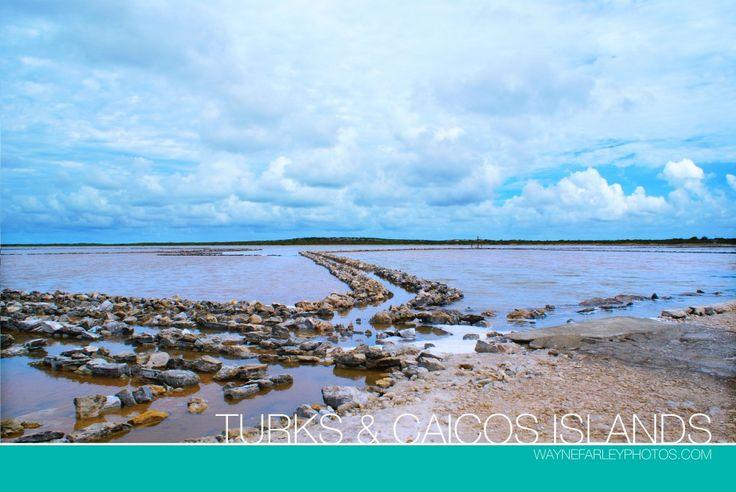 Salt Cay, Turks and Caicos Islands