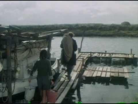 Storm boy is a Classic in Australian Cinema.
