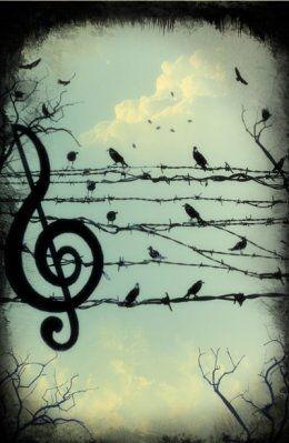 bird, birds, clouds, music, music note, sky