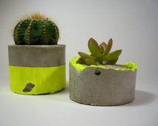 daschund in the desert concrete plant pots with neon stripe