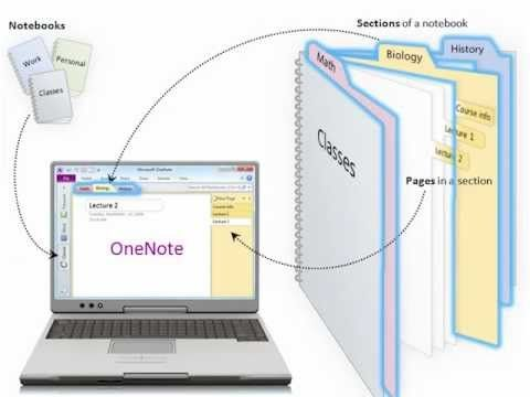 Microsoft OneNote is an application that allows you to organize notes, files, articles, pictures and more in a single digital notebook.    In this Quick Tip, we explain the basics of using this powerful software tool.