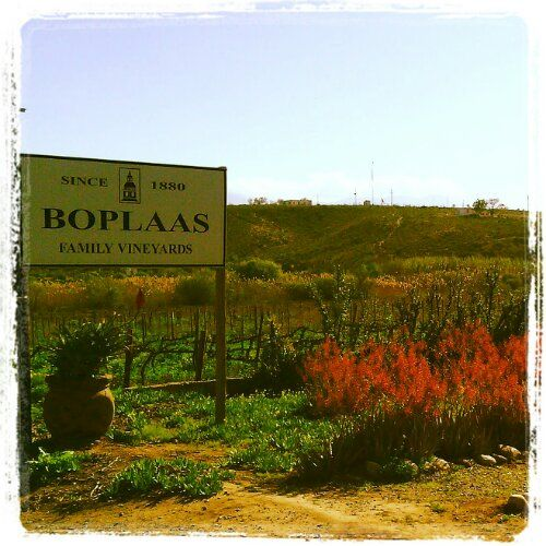 Route 62 - BoPlaas in Calitzdorp - Port Capital of South Africa