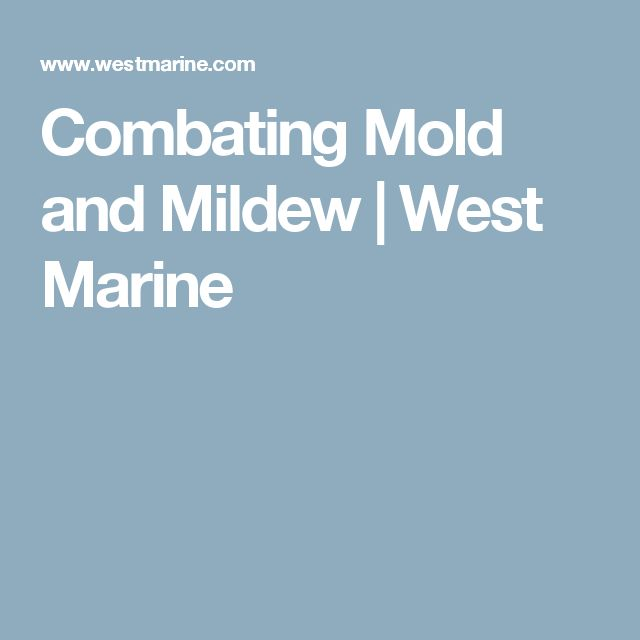 Combating Mold and Mildew | West Marine