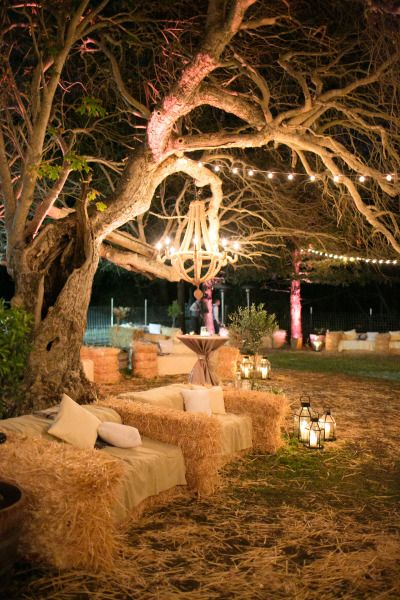 Hay is a cheap way to bulk up and decorate a space. We can decorate with blankets , lights or holly etc