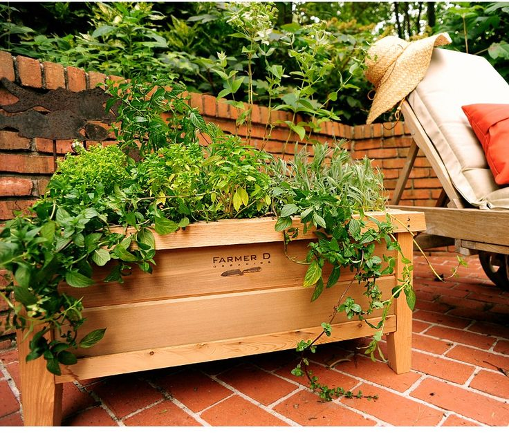 Growing Vegetables In Urban Planters: 155 Best Gardens Galore Images On Pinterest