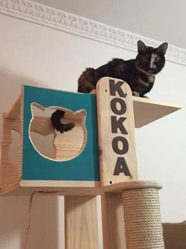 gimnasio para gatos rascador 100% madera / ruedas ejercicio