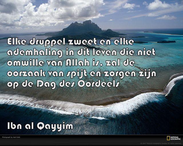 Citaten Over Spijt : Best nederlandse quotes islam images on pinterest