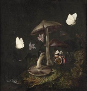 Otto Marseus van Schrieck