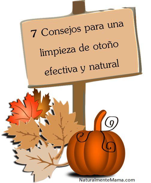 12 best ideas para el hogar images on pinterest for Ideas para el hogar