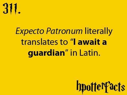 This just adds to my point that learning Latin would be a good thing!