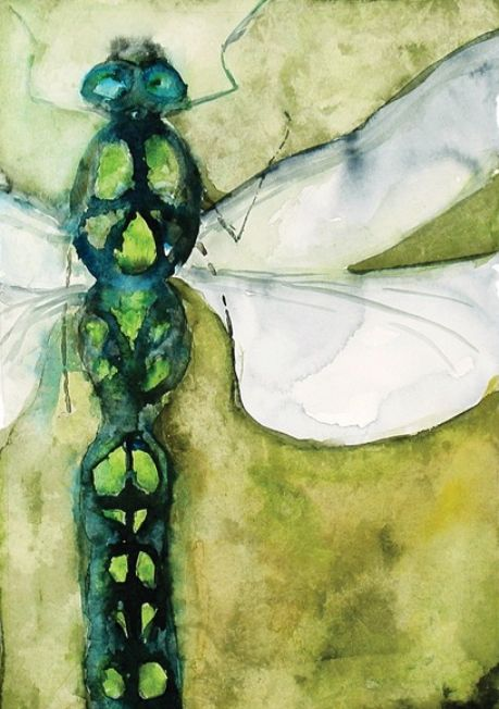 Dragonfly - by Roderick MacIver - Signed, Limited Edition Print