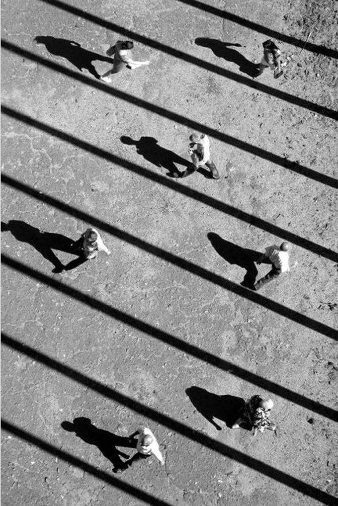 Luz e sombra de Alexei Bednij
