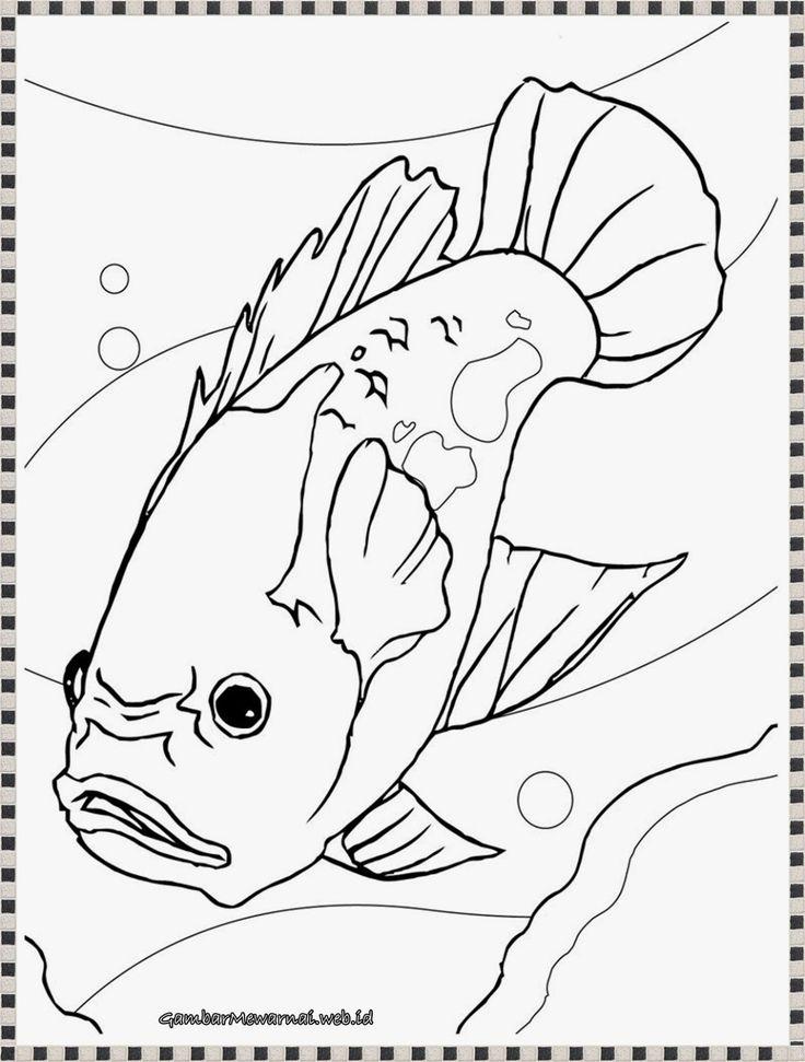 Gambar Mewarnai Ikan Laut