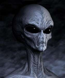 """Alien name :  MAITRE They ave 2 homplanets in constellation Megopei. They have the same average height as Humains and  are considered by many alien races as """" parasites"""". Visited Earth for the first time during the pre-historic  period (date unknown). see more : http://en.calameo.com/read/003261369f3a4ebfdbffb"""