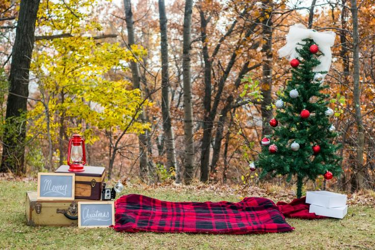 Christmas Mini-Sessions :: Green Bay, Appleton, Kaukauna Photographer - Alison Kundratic Photography