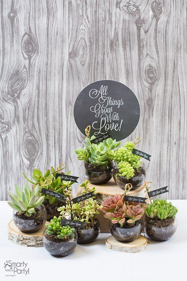 DIY succulent wedding favors. A fun wedding favor or name card holder!