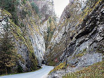 Manínska tiesňava je národná prírodná pamiatka neďaleko mesta Považská Bystrica v Súľovských vrchoch. Manínsky potok sa tu v priebehu tisícročí zarezal do Manínskeho bradla a rozdelil ho tak na dve časti – Veľký a Malý Manín. Je to oblasť so zaujímavou a špecifickou flórou a faunou a vedie ňou aj náučný chodník. Manínska tiesňava je zároveň najužší kaňon na Slovensku.