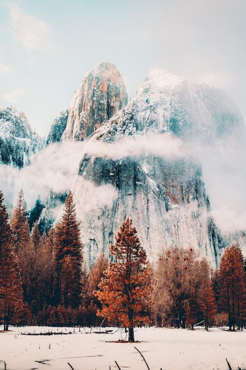 Yosemite National Park // Neohumanity https://ladieshighheelshoes.blogspot.com/2016/01/trends-of-high-heel.html