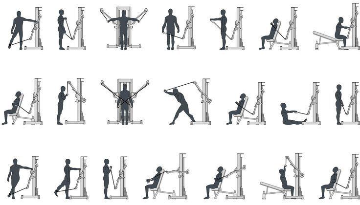 Best 25+ Planet fitness machines ideas on Pinterest