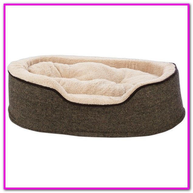 Halo Dog Bed 24 X 34 Halo Reversible Rectangular Cuddler 24 By 34 Inch Pecute Deluxe Pet Bed For Cats Dog Bed Extra Large Dog Bed Dog Training Obedience