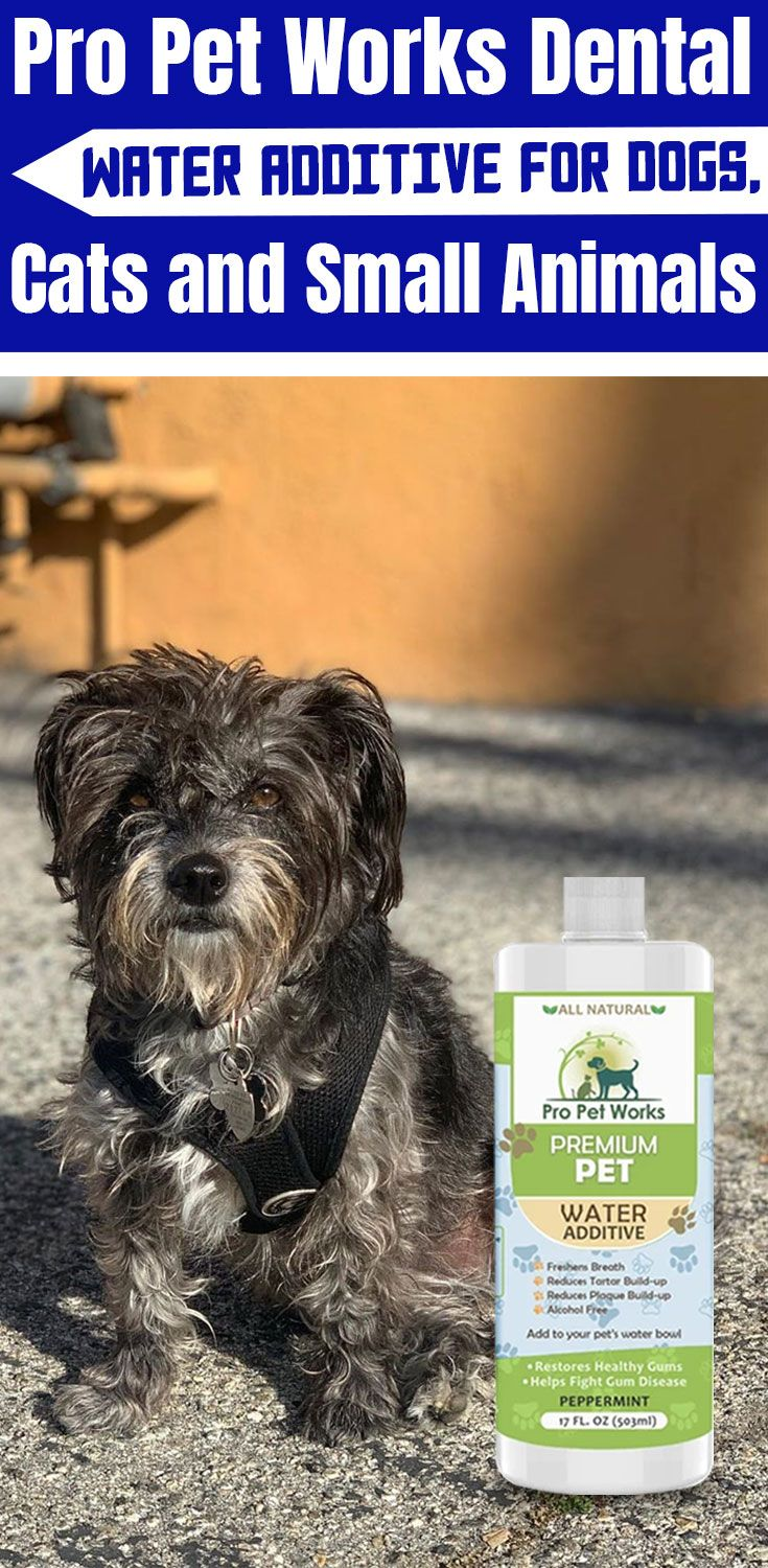 Dental water additive for dogs cats and small animals 17