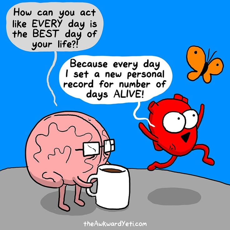 13 best funny brains images on pinterest awkward yeti