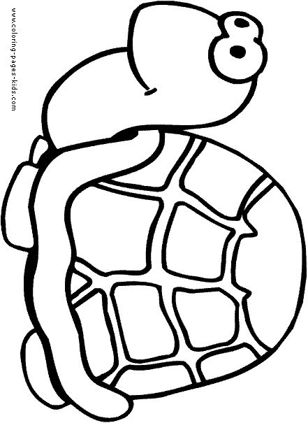 Turtle Coloring Pages Color Plate Sheet