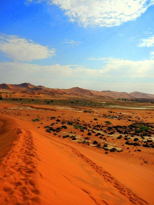Desert trekking. #Namibia #Africa
