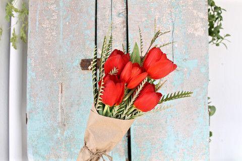 Tulipes rouges & Grevillea Ivanhoe