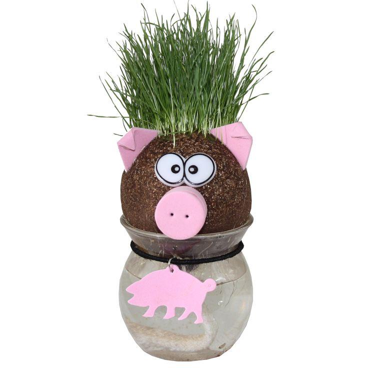 Animal Grass Head Varken € 5,49 (incl. btw)  Uit deze grappige varken groeit gras (haar) uit zijn hoofd. Te koop bij www.planthetsimpel.nl