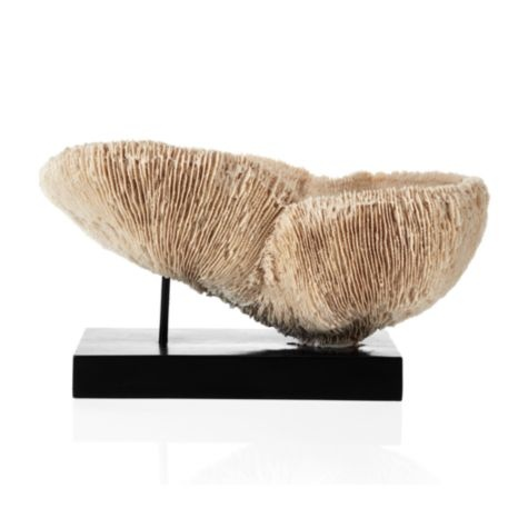 Faux Coral Bowl, $129.95: Coral Bowl, Faux Coral, Decorative Accessories, Bowls