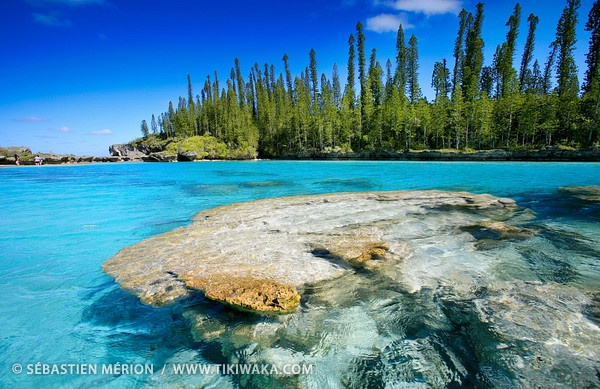 Natural swimming pool, Oro Bay, Isle of Pines, New Caledonia by Sébastien Mérion... My country :)