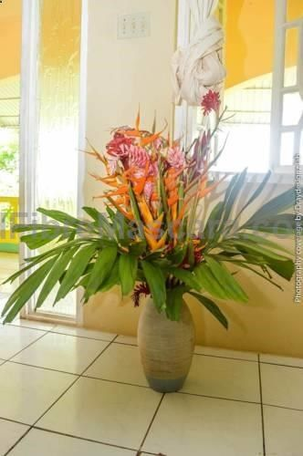 Ackee Tree Sea View Villa Boston Featuring free WiFi throughout the property, Ackee Tree Sea View Villa offers accommodation in Port Antonio. Guests can enjoy the on-site bar. Free private parking is available on site.