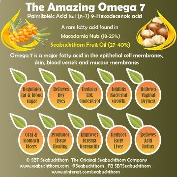 Omega-7 is a rare fatty acid in the epithelial cell membranes, skin, blood vessels and mucous membranes. The Amazing Omega 7 has many benefits including regulating fat and blood sugar metabolism (shows promise for diabetes), reducing LDL Cholesterol, relieving acid reflux, oral and stomach ulcers, dry eyes and vaginal dryness, promoting tissue healing, reducing fatty liver and improving eczema and dermititis. Palmitoleic Acid (16:1) Sources: Macadamia Nuts 18-25% SBT Fruit Oil 27-40%
