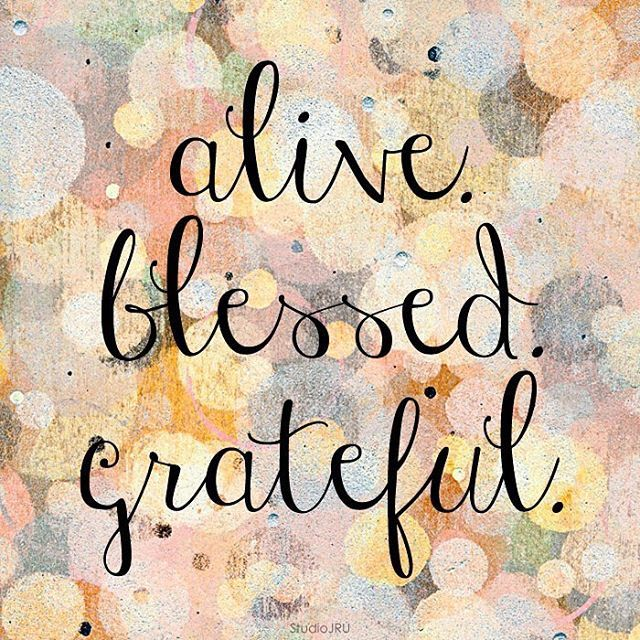 Thankful For Family Quotes: Best 25+ Grateful Quotes Ideas On Pinterest