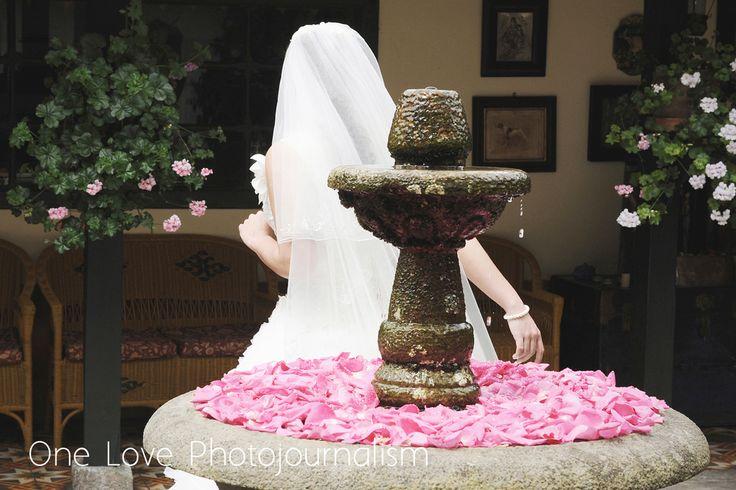 One Love Photojournalism www.onelove.com.co Hacienda Márquez