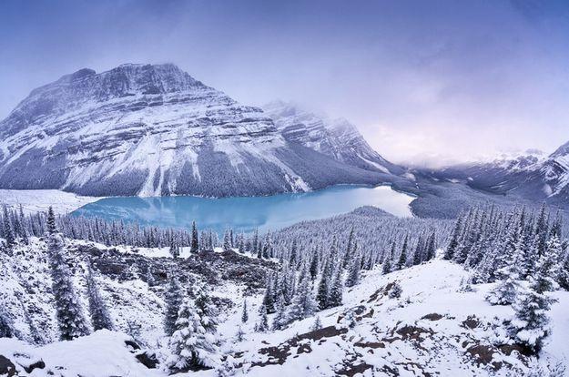 Snowstorm light, por Vladimir Medvedev (Rússia) - O fotógrafo esperou nevar para amenizar a intensa luminosidade, durante o dia, do Peyto Lake, no Banff National Park do Canadá: http://abr.io/5rEs